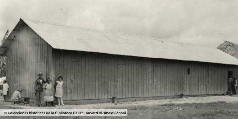 © Plantaciones de banano_colecciones harvard business school 3