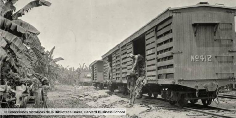 © Plantaciones de banano_colecciones harvard business school 4