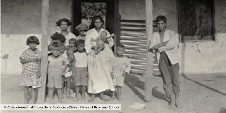 Plantaciones de banano_colecciones harvard business school 3