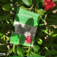 """""""La hojarasca"""" vista con los lentes de la crítica y la teoría literaria"""